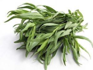 پخش عمده باکیفیت ترین سبزی