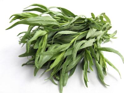 توزیع بهترین سبزی ترخون خشک