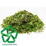 خرید ارزان آویشن شیرازی