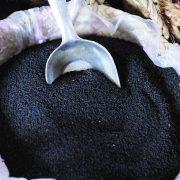 خرید اینترنتی عمده دانه سیاه دانه