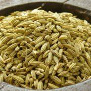 فروش اینترنتی انواع دانه رازیانه همدان