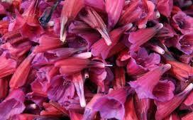 مرکز خرید انواع دمنوش گل گاوزبان الموت