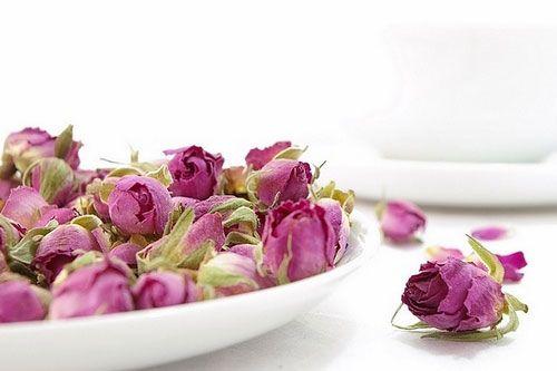 غنچه گل محمدی