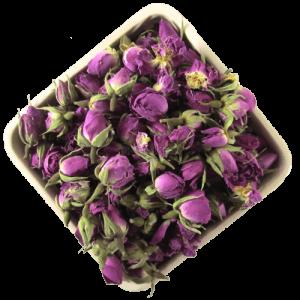 فروش عمده غنچه گل محمدی