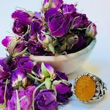 غنچه گل محمدی در مشهد