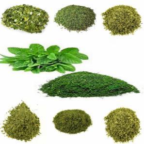بسته بندی سبزیجات خشک