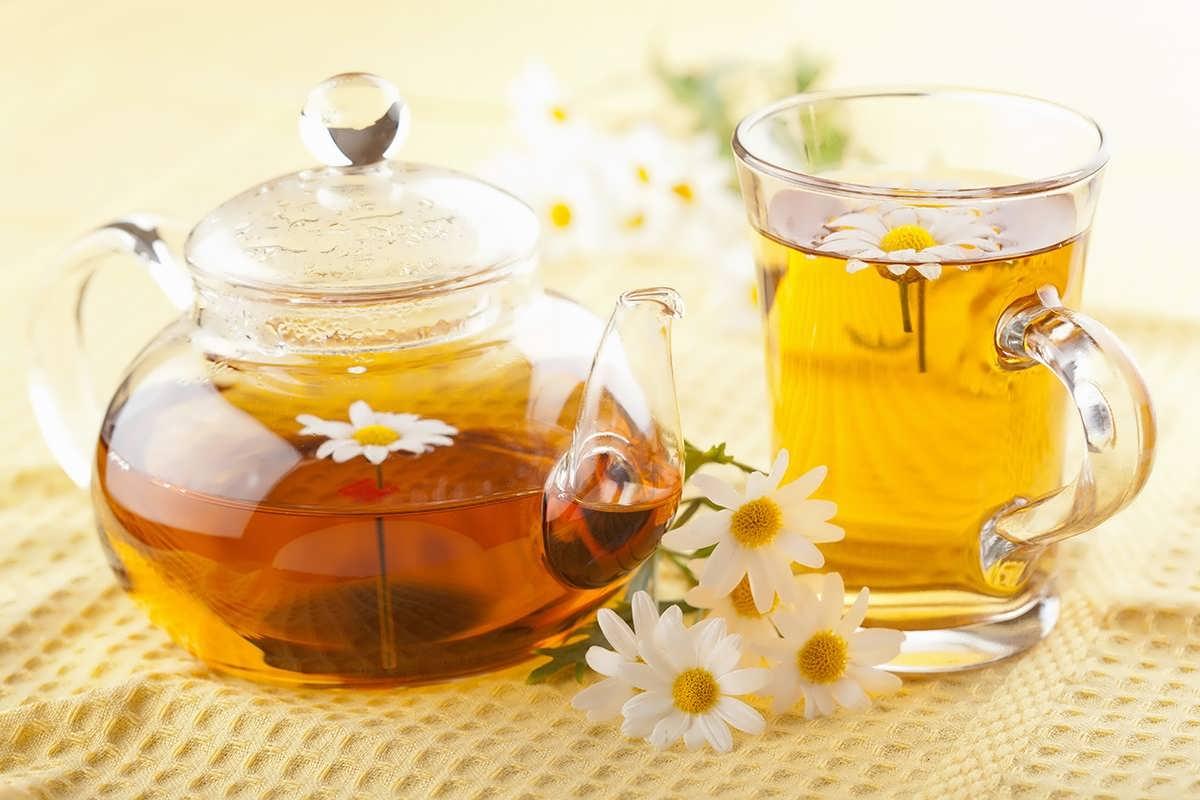 گیاه دارویی گل بابونه