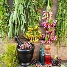 گیاهان دارویی کمیاب