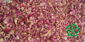 تأمین و توزیع پر گل محمدی صادراتی