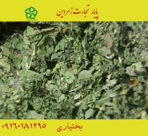 کاربردی ترین سبزیجات خشک